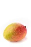 En hel mango mot en vit bakgrund Arkivfoto