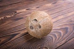 En hel och exotisk kokosnöt på en träbakgrund Närbild av den hela och ljusa bruna kokosnöten Hawaianska kokosnötter arkivfoton