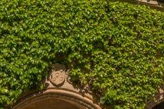 En heraldisk sköld i gräsplanen Royaltyfria Foton