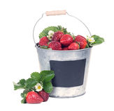 En hink med en mogen jordgubbe bakgrund isolerad white Royaltyfri Bild