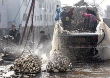 En hiver les travailleurs gagnent leur monnaie métallique dans l'étang Photos stock