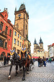 En hästvagn på det gamla stadshuset Arkivfoto