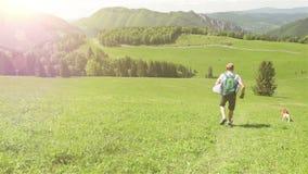 En hund med dess ledar- spring ner den gröna kullen, medan klättra i berg