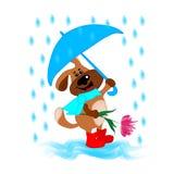 En hund med ett paraply och en blomma ska gratulera någon royaltyfri illustrationer