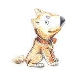 En hund rolig teckenchildren& x27; s-bild stock illustrationer