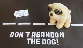 En hund som överges på vägen som leder till havet Arkivfoto
