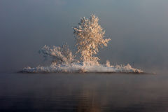 En ö i dimman Royaltyfri Fotografi