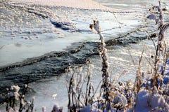 En Icy flod Fotografering för Bildbyråer