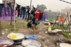 En indier Washerman lokalt kallade 'Dhobi ', royaltyfria foton