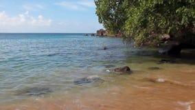 En Indio-bahía del golfo Kingstown, Saint Vincent y granadinas almacen de video