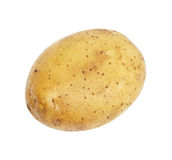 En isolerad potatis royaltyfria bilder