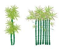 En isometrisk uppsättning och ett olikt utformar av den Bammboo treen Royaltyfri Foto