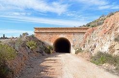 En järnväg tunnel Arkivbilder