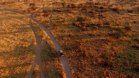 En jaktbil rider i aftonen på en safari lager videofilmer