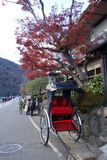 En Jinrikisha parkerar under trädet för röd lönn i Arashiyama, Kyot Arkivfoton