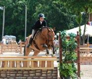 En jockey Jumps An Obstacle på showen för Germantown välgörenhethäst i Germantown, TN royaltyfri foto