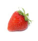 En jordgubbe Royaltyfria Bilder