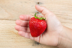 En jordgubbe som rymms av en hand arkivbild