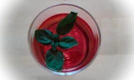 En jordgubbedrink med bladet av basilikan arkivbild