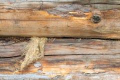 En journal av trä gammalt och sprucket Yttersidan är grov och ojämn Royaltyfri Foto