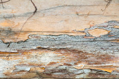 En journal av trä gammalt och sprucket Yttersidan är grov och ojämn Arkivfoton