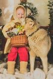 En julsaga Royaltyfri Fotografi