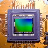 En känslig matris av den digitala fotokameran Arkivbilder