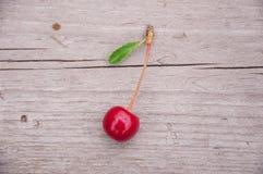 En körsbär på träbakgrund eller golv Royaltyfri Fotografi