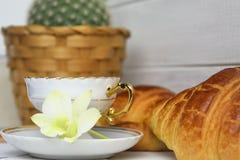 En kaffekopp med espresso på ett tefat, giffel, kaktus i korgen, orkidé på trämålad bakgrund Royaltyfria Bilder
