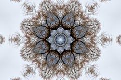 En kalejdoskop, abstrakt fantasi, illustration, royaltyfri illustrationer