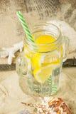 En kall drink i exponeringsglas av kaktuns med citronen, i sommaren på royaltyfri bild