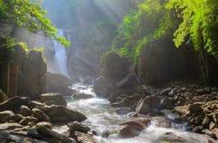 En kall uppfriskande vattenfall i en mystisk skog med solljus som skiner till och med den överdådiga grönskan Arkivbild