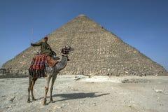 En kamel och en ryttare sitter framme av pyramiden av Khufu på Giza i Kairo i Egypten Royaltyfri Fotografi