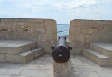 En kanon Fotografering för Bildbyråer