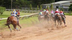 En kapplöpningshäst och en jockey i en hästkapplöpning arkivfoton