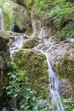 En kaskad av små vattenfall i Forest Krushuna, Bulgarien Royaltyfri Bild