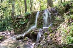 En kaskad av små vattenfall i Forest Krushuna, Bulgarien 9 Arkivbild