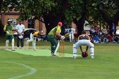 En kastare som bowlar till en slagman Arkivbild