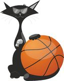 En katt med en klumpa ihop sig för basket Arkivfoton