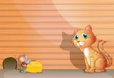 En katt och en tjalla Arkivbilder