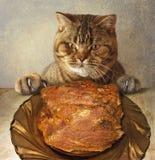 En katt och ett stort stycke av kött arkivbild
