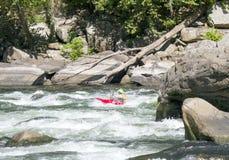 En kayaker skjuter forsarna royaltyfria bilder