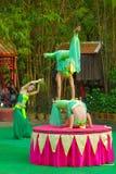 En khmerskådespelare under den sceniska kapaciteten Kina villiage akrobat Arkivfoton