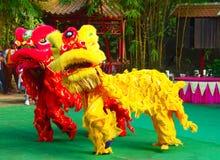 En khmerskådespelare under den sceniska kapaciteten Kina villiage lions två Royaltyfri Foto