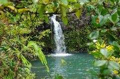 Vattenfall i Regna-skog Royaltyfria Bilder