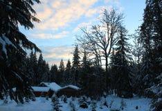 En klassisk kanadensisk vinter Royaltyfri Fotografi