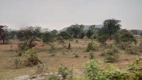 En klick från drevet av kullen arkivfoto