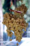 En klunga av vita druvor på marknaden Arkivbild