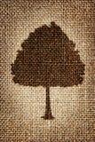 En kontur av en träd målad brun målarfärg på torkduken Royaltyfri Bild