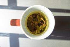 En kopp av grönt te i naturlig lightining Arkivbild